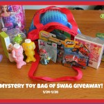 mystery bag of toy swag