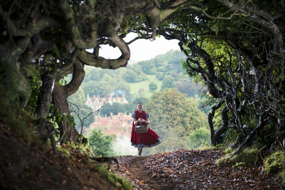 into the woods new
