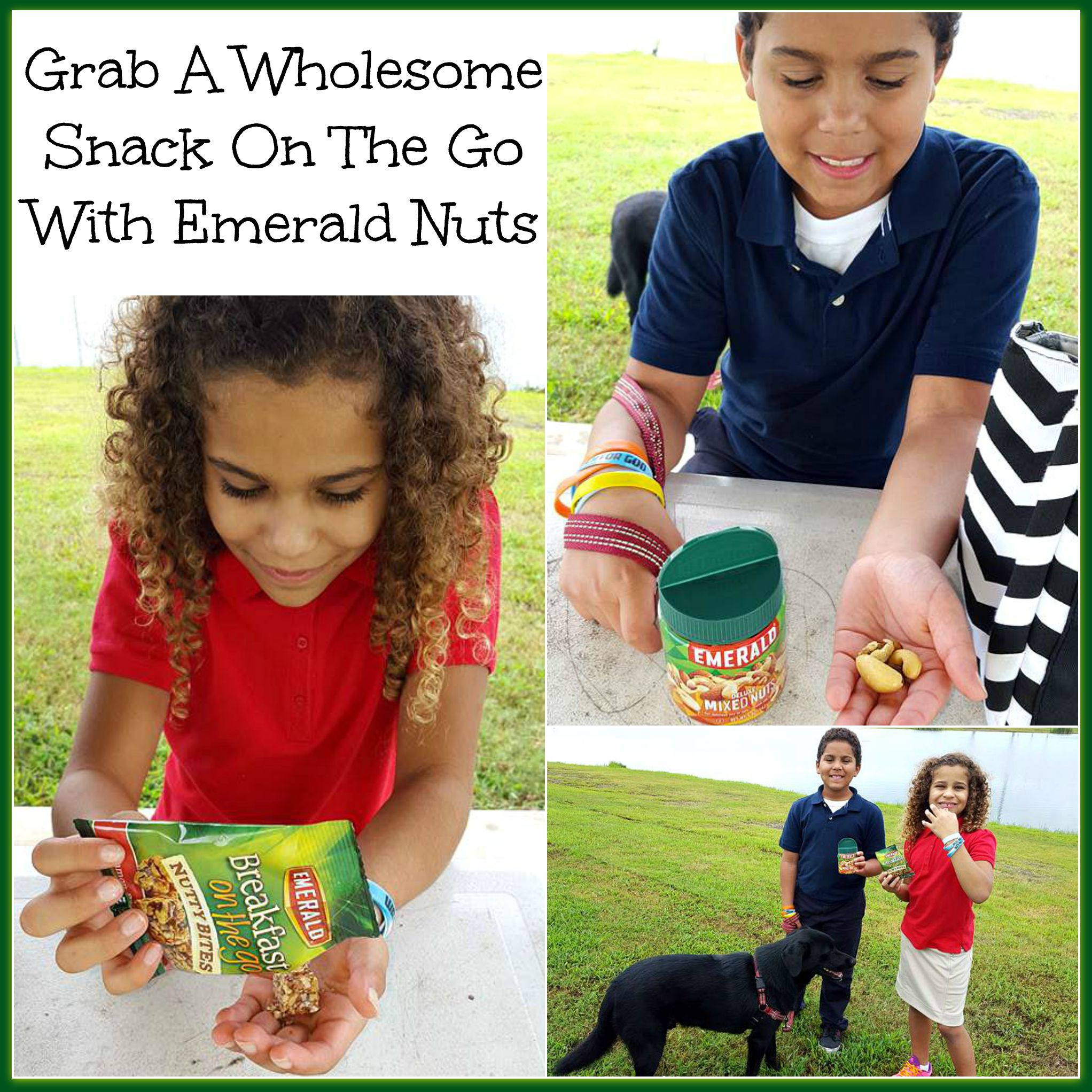 Grab A Wholesome Snack On The Go With Emerald Nuts
