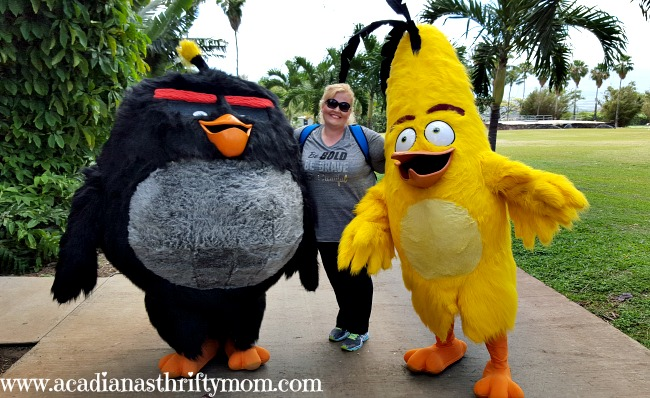 Enter For A Chance To Win A $100 Spafinder Gift Card #AlohaAngryBirds