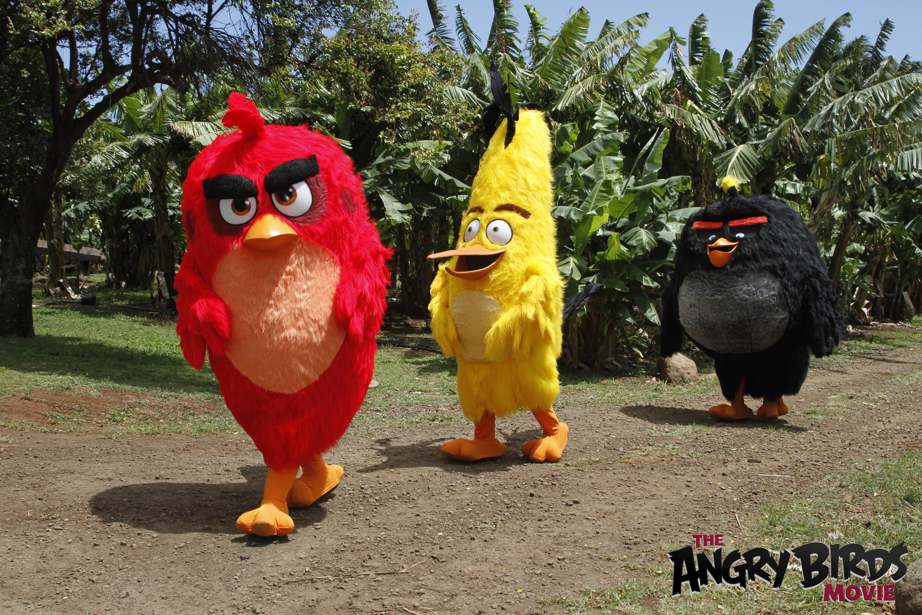 I Explored Bird Island With The Angry Birds #AlohaAngryBirds
