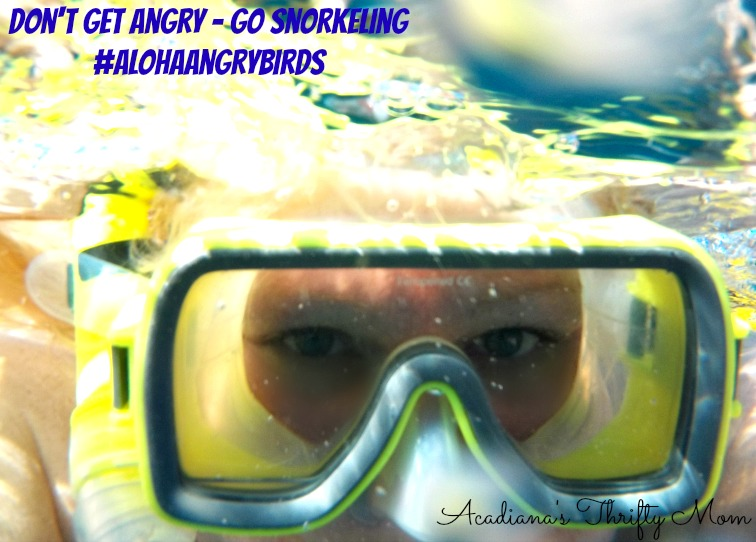 Don't Get Angry - Go Snorkeling #AlohaAngryBirds