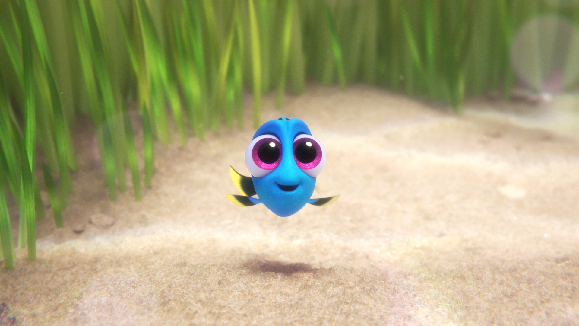 New Baby Dory Clip #FindingDory
