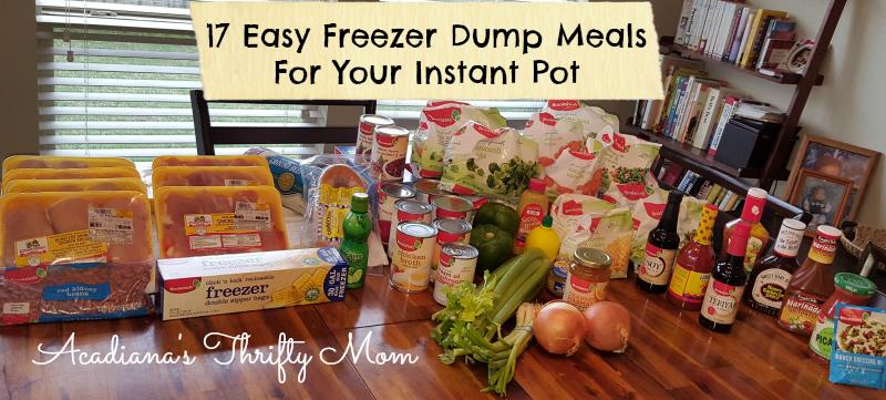 17 Easy Freezer Dump Meals For Your Instant Pot