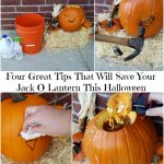 Four Great Tips That Will Save Your Jack O Lantern This Halloween