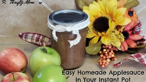 Easy 10 Minute Homemade Applesauce In Your Instant Pot